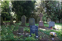SK9485 : Graveyard at St Andrew's Church, Fillingham by Ian S