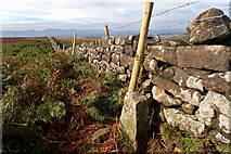 NZ5812 : Boundary stone, Ryston Bank by Mick Garratt