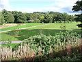 SD7916 : Nuttall Park, Ramsbottom by Christine Johnstone
