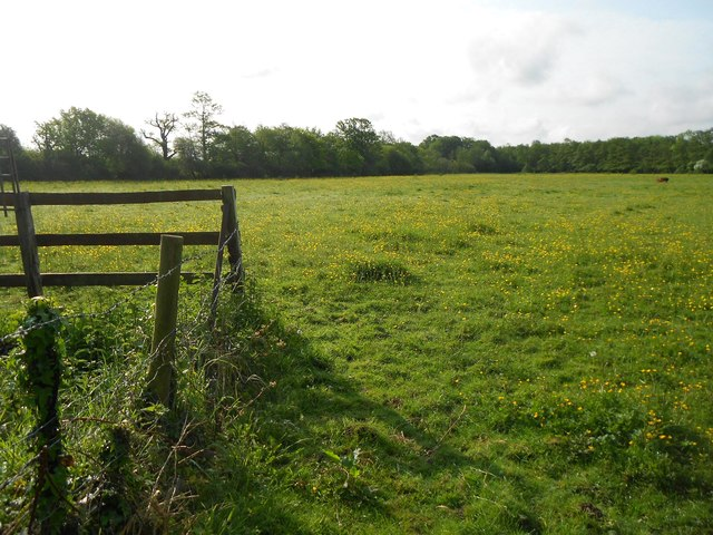 Egham: Footpath from Prune Hill to Stroude Road