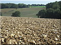 SP9202 : Ploughed field above Herbert's Hole by Peter S