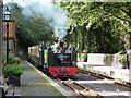 SN6878 : Locomotive No.8 pulls into Aberffrwd station : Week 39