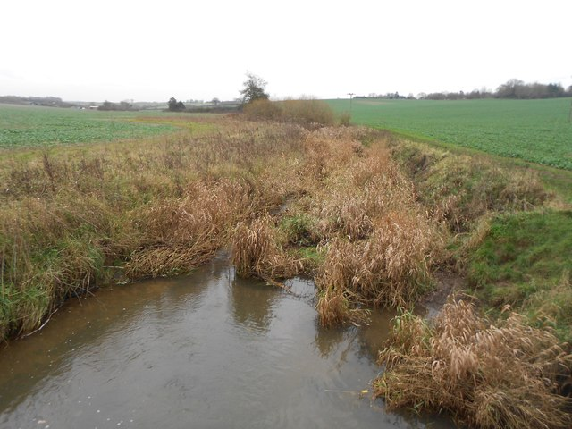 River Beane near Aston (2)