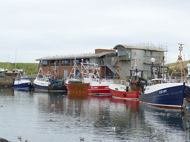 Trawlers at Eyemouth harbour
