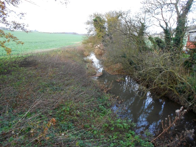 River Beane next to Holbrook Farm