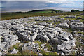 SD2874 : Limestone Pavement, Birkrigg Common by Ian Taylor
