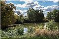 TQ1758 : Floral Pool by Ian Capper