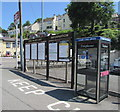 SX2553 : Looe Valley Line information boards and a BT phonebox, Looe by Jaggery