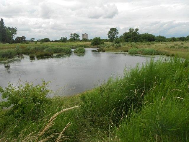 Dagenham: Beam Parklands