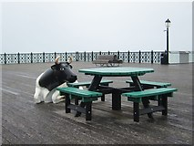 TQ8109 : Cow on Hastings Pier by Oast House Archive