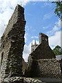 S7237 : Ruins of St Mullins Church by Matthew Chadwick