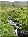 NY4414 : A tributary of Rampsgill Beck by Christine Johnstone