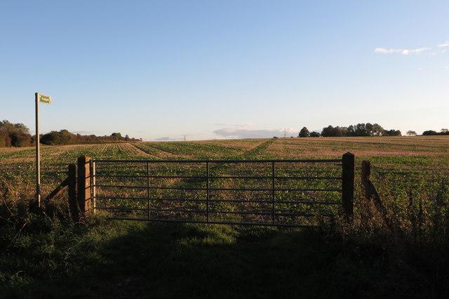Footpath to Hall Farm