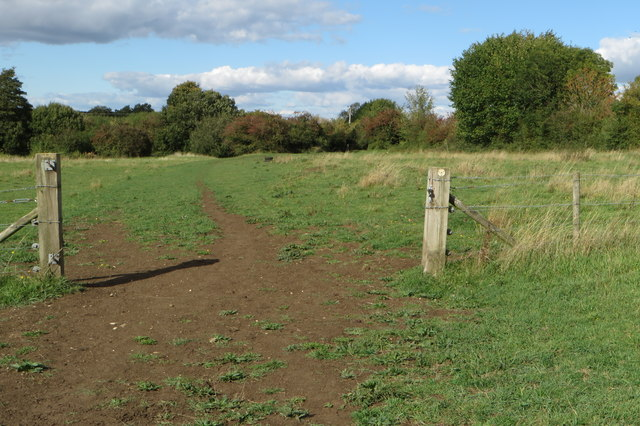Footpath to Whitfield