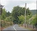 R8528 : R663, Glen of Aherlow by N Chadwick
