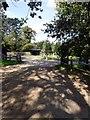 SU9841 : The entrance road to Winkworth Arboretum by Graham Hogg