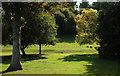 SX9476 : Luscombe Park by Derek Harper