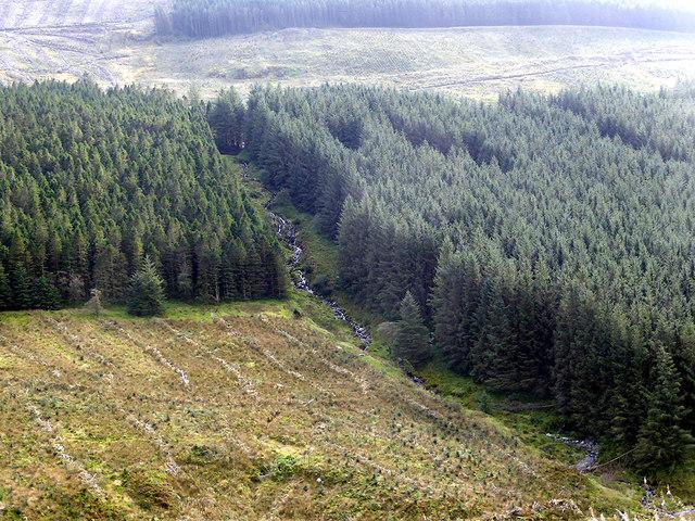 A stream flowing down into Glyn Iago