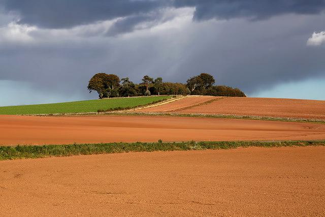 Arable farmland at Preston