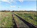 TQ9168 : Old railway lines on Ridham Marshes by Marathon