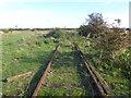 TQ9168 : Former siding on Ridham Marshes by Marathon