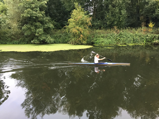 Sculling past a raft of duckweed on the Avon, southeast Warwick