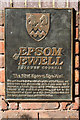 TQ1960 : Plaque, Epsom Well by Ian Capper