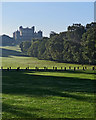 SK5239 : Wollaton Park in early autumn by John Sutton