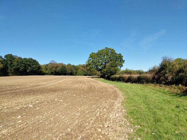 Footpath towards Staplefield Common