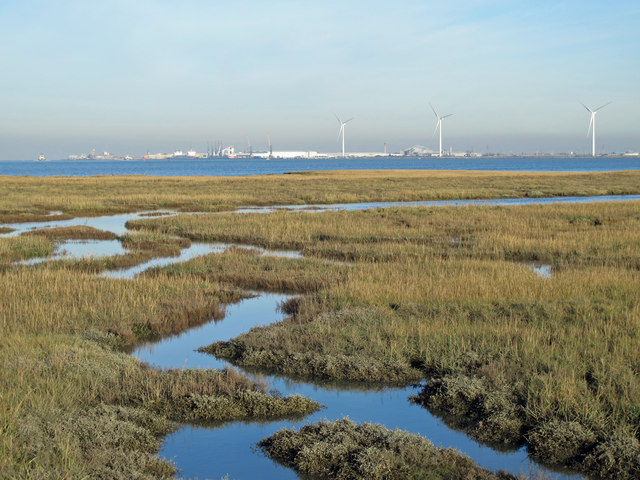 The northern edge of Chetney Marshes and the River Medway (2)