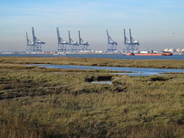 The northern edge of Chetney Marshes and the River Medway (4)