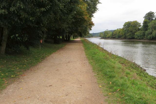 Footpath by the Dart