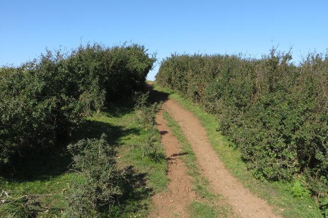 South West Coast Path towards Hallsands