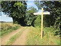 TL9099 : Peddars  Way  at  a  crossroad  paths  and  road by Martin Dawes