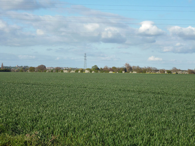 Field east of Doggetts Chase