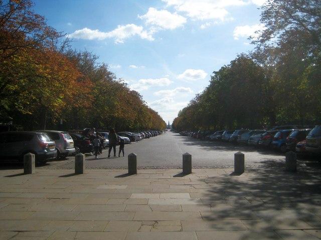 Greenwich: Greenwich Park: Blackheath Avenue