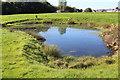 ST1998 : Pond, former golf course, Oakdale by M J Roscoe