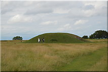 N9259 : Mound of the Hostages by N Chadwick