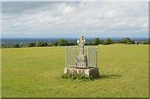 N9159 : Cross, Hill of Tara by N Chadwick