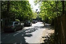 TQ6040 : Blackhurst Lane by N Chadwick