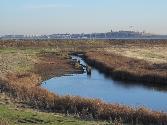 Tailness Marshes (2)