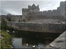 S0524 : Cahir castle by Caoimhe Egan
