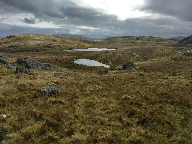 Small lakes near Craig y Bychau