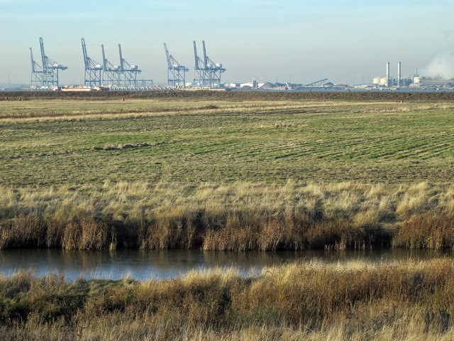 Tailness Marshes