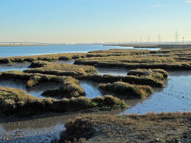 The eastern edge of Chetney Marshes by Long Reach, The Swale