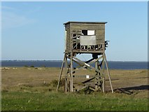 TM0308 : Ruined tower at Bradwell-on-Sea by Marathon