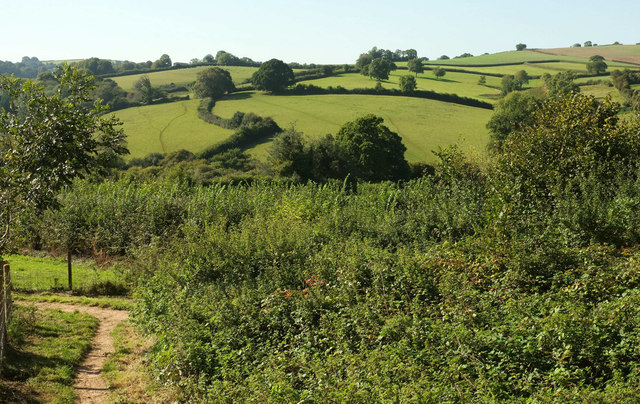 Looking west from Hoyle Copse
