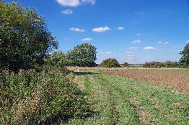 Field Margin by The River Roding