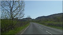 NM8312 : A816 west of Kilmelford by Alpin Stewart