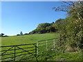 TQ1894 : View from Edgwarebury Lane by Marathon